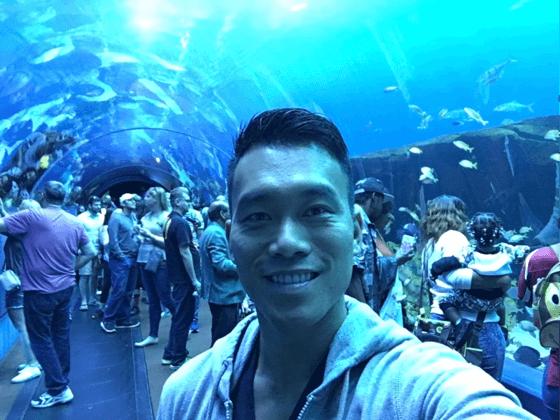 Georgia Aquarium _ Atlanta